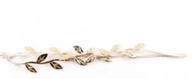 Haarbandje met gouden blaadjes
