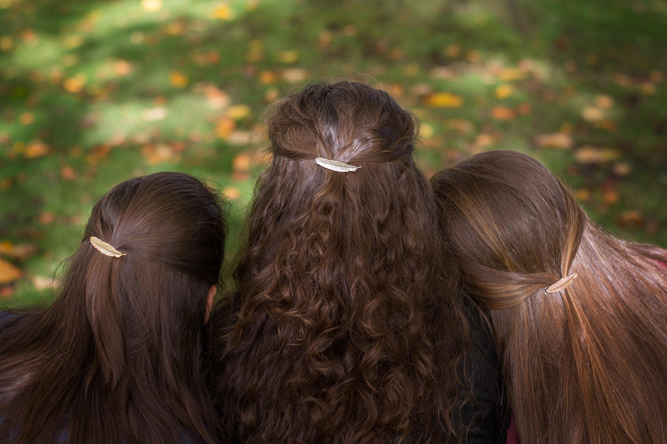 Haarclips veertje