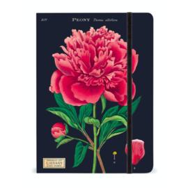 Cavallini & Co. notitieboek (meerdere soorten)