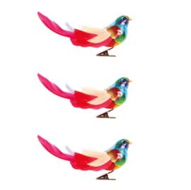 &Klevering  bird clips - rainbow, set of  3