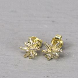 Jeh Jewels oorstekers zilver verguld ster