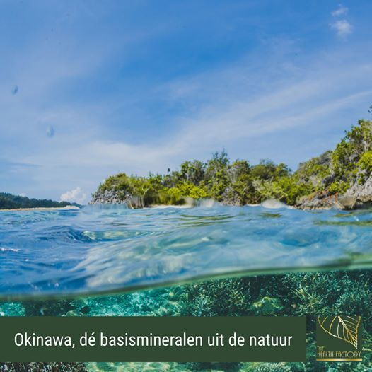 okinawa zeekoraal mineralen