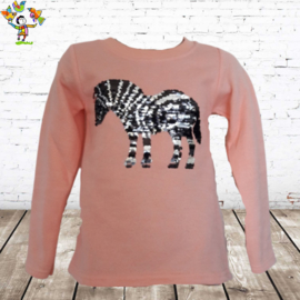 Trui met Zebra zalm