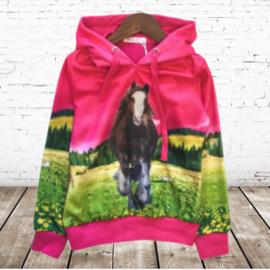 Roze meisjes trui met paard H24