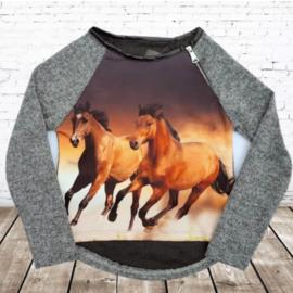 Grijze trui met paarden