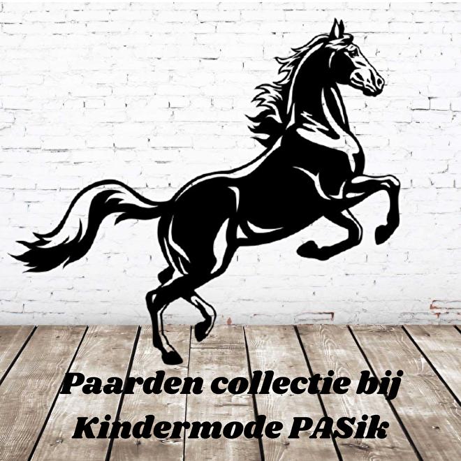 Paarden collectie kinderkleding bij Kindermode PASik