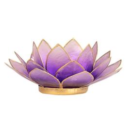 Lotus sfeerlicht violet