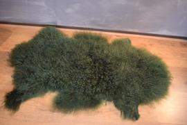 Tibetaans schapenvacht groen