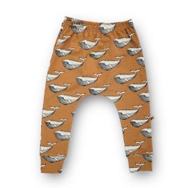 Slim Harem Whales (toffee)