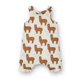 Harem Overall Alpaca