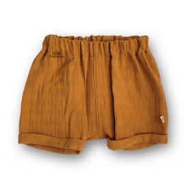 Lounge Shorts Messing