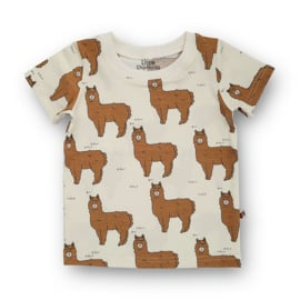 Shirt Alpaca