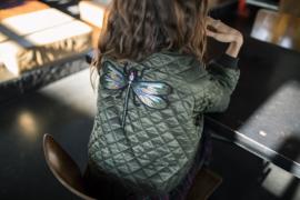 Dragonfly XL