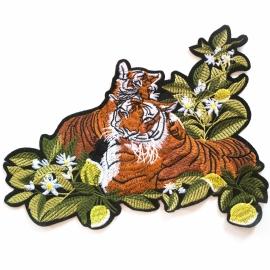 XL Tigers