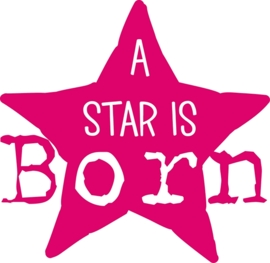 A STAR IS BORN APPLICATIE