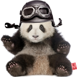 PANDA STRIJKAPPLICATIE