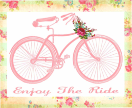 ENJOY THE RIDE STRIJKAPPLICATIE