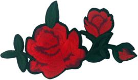 ROSE XL PATCH