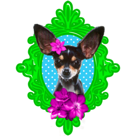 FRAMED CHIHUAHUA IRON ON TRANSFER