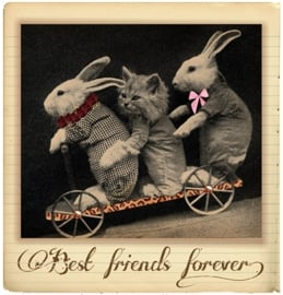 BEST FRIENDS FOREVER IRON ON TRANSFER