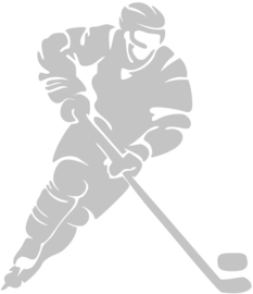 IJSHOCKEY STRIJKAPPLICATIE