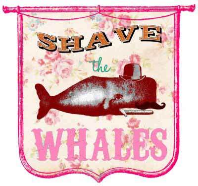 SHAVE THE WALES STRIJKAPPLICATIE