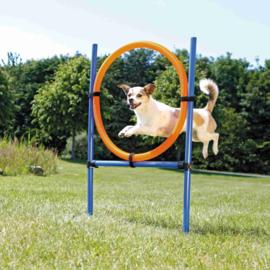 Dog Activity Agility Ring,kunststof 115x 3cm, 65cm