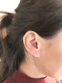 Goud op zilver oorstekers schijfje