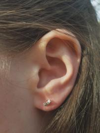 Zilveren oorstekers gedraaide streep