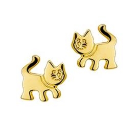 Gouden oorstekers kat