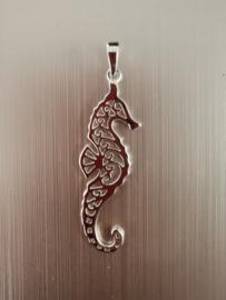 Zilveren kettinghanger zeepaardje