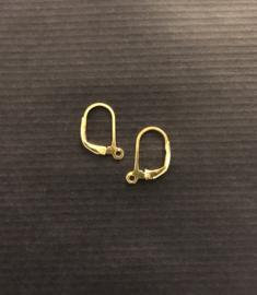Goud op zilver oorbelhaakjes met sluiting