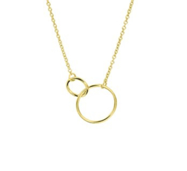 Goud op zilveren collier 2 rondjes