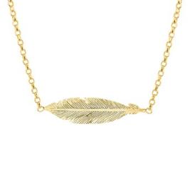 Goud op zilveren collier veer