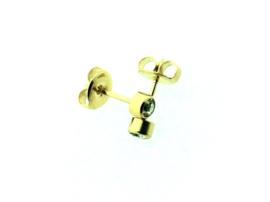 Edelstalen zweerknopjes met steentje in goud-kleur 'groot'