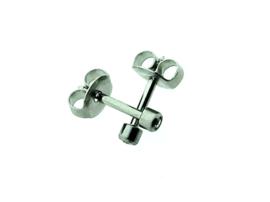 Edelstalen zweerknopjes met steentje in zilver-kleur 'klein'