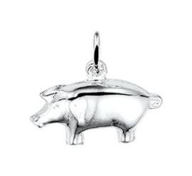 Zilveren kettinghanger varken