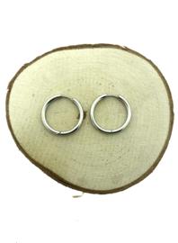 Edelstalen klapcreolen zilver 25 mm