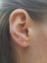 Zilveren oorstekers sterretje