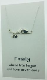 Zilveren geschenk FAMILY