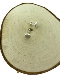 Zilveren oorstekers rond en mat