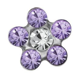 Zweerknopjes paarse bloem