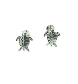 Zilveren oorstekers schildpad