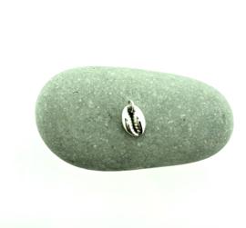 Zilveren bedel schelp