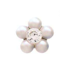 Zweerknopjes bloem parel