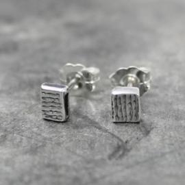 Zilveren oorstekers met streepjesstructuur