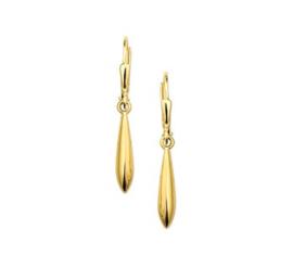 Gouden oorhangers pegel