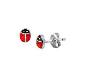 Zilveren oorstekers lieveheersbeestje