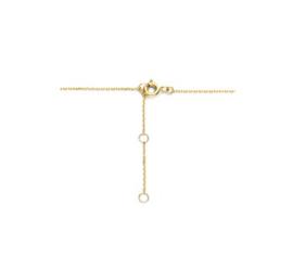 Gouden collier zirkonia
