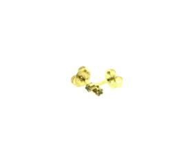 Edelstalen zweerknopjes met steen (ster) in goud-kleur 'klein'